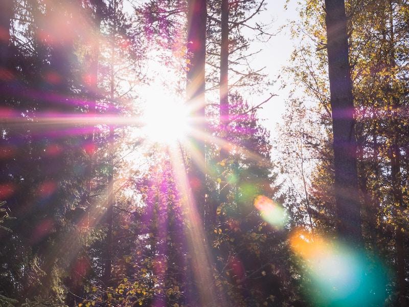 カラフルな光のゴースト